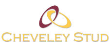 TM-logo-Cheveley